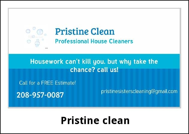 Professional House Cleaners