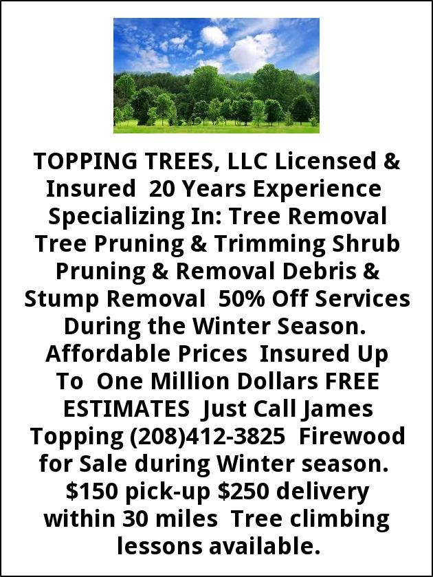 Tree Remova Tree Pruning & Trimming Shrub Pruning & Removal Debris & Tump Removal