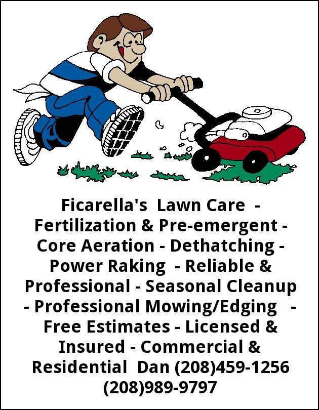 Professional Mowing/Edging