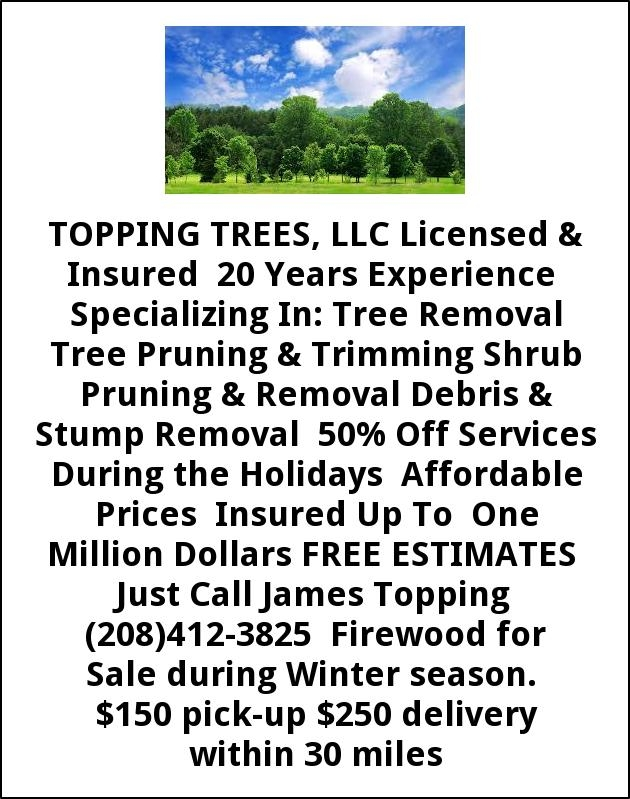 Tree Removal & Debris Stump Removal