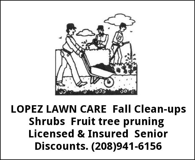 Fall Clean-Ups