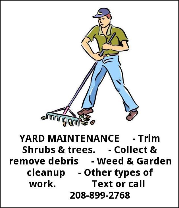 Yard Maintenance