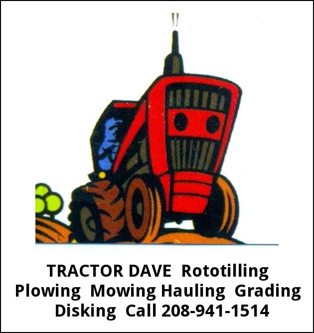 Tractor Dave